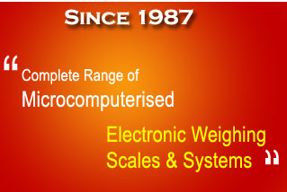 Electronic Weighing Scale & System